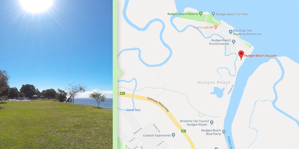 Dog Walks Brisbane - Tuckeroo Park, Nudgee Beach