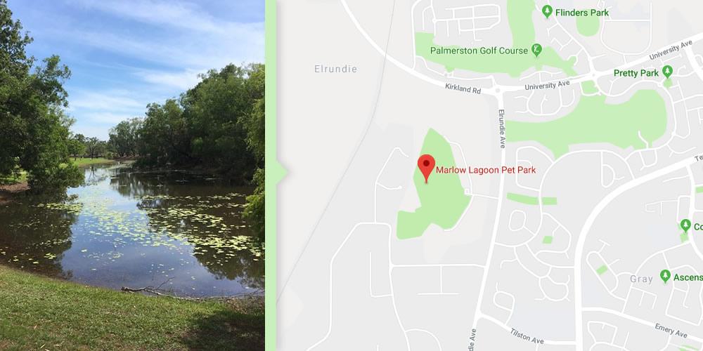 Dog Walks Darwin - Marlowe Lagoon Pet Park