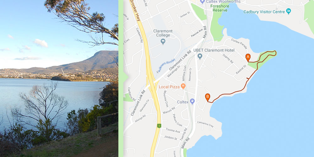 Dog Walks Hobart - Conneware Bay to Windermere Beach