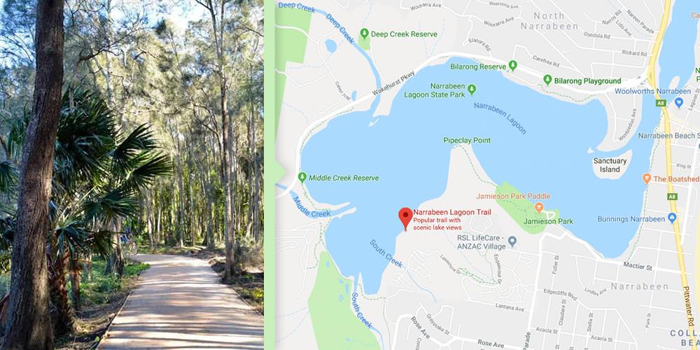 Dog Walks Sydney - Narrabeen Lagoon Bush Trail