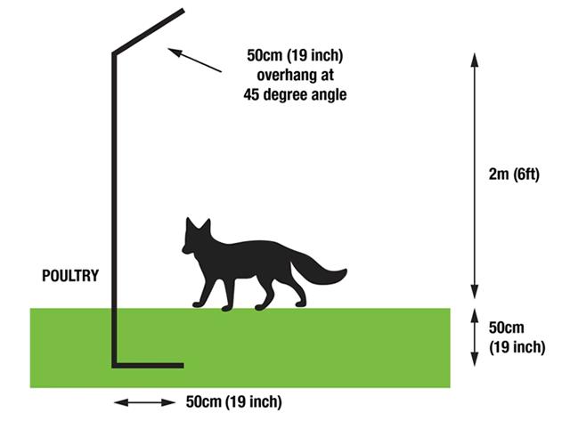 How to fox proof your chicken coop diagram