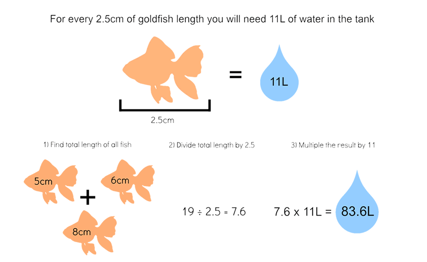 Gold Fish Tank Sizing Chart - How to care for goldfish
