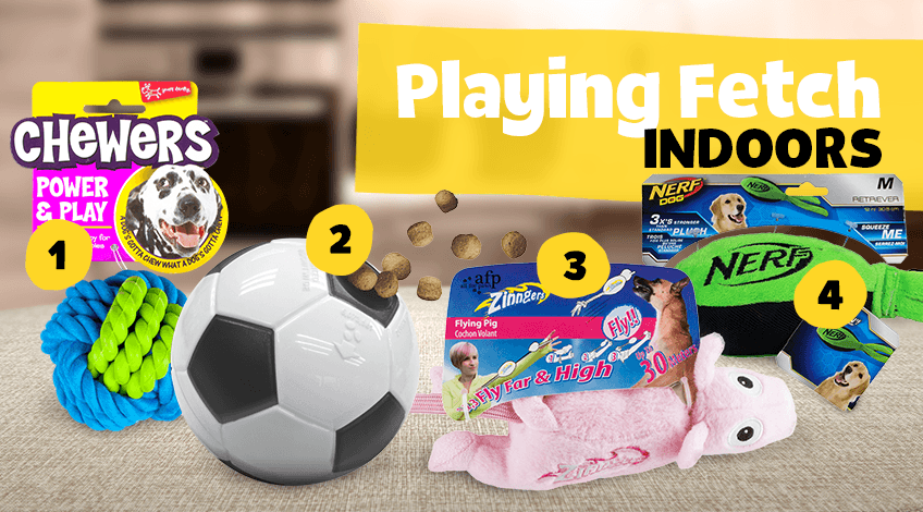 Dog fetch toys for indoors