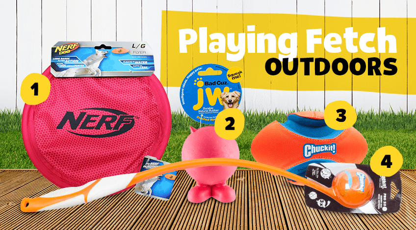 Dog fetch toys for outdoors