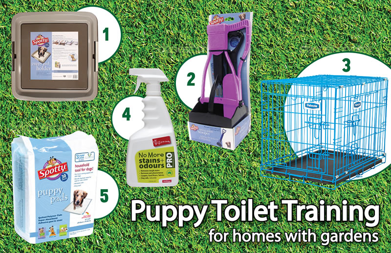 how to toilet training your puppy for homes with gardens