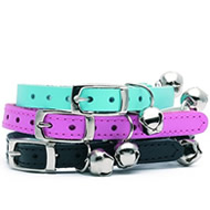 Cat Collar Leads Harness