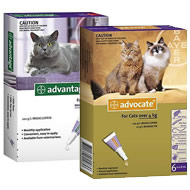 Cat Flea Tick & Worming