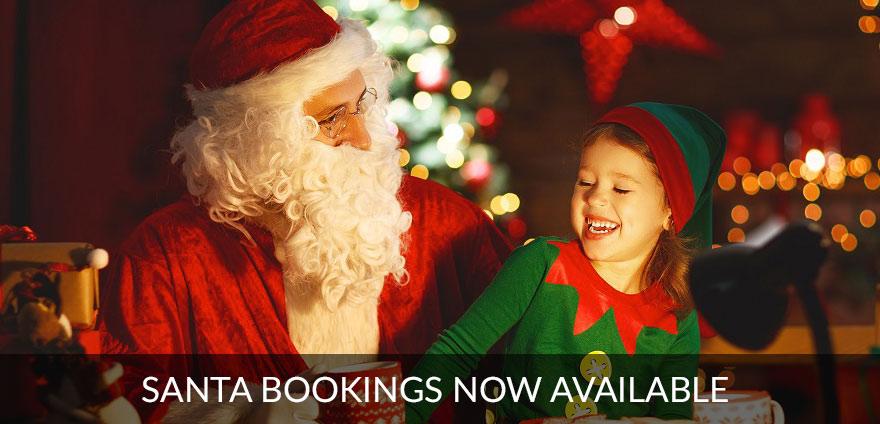 Santa and Elf reading