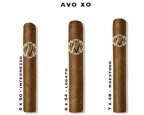 Buy AVO XO Cigars
