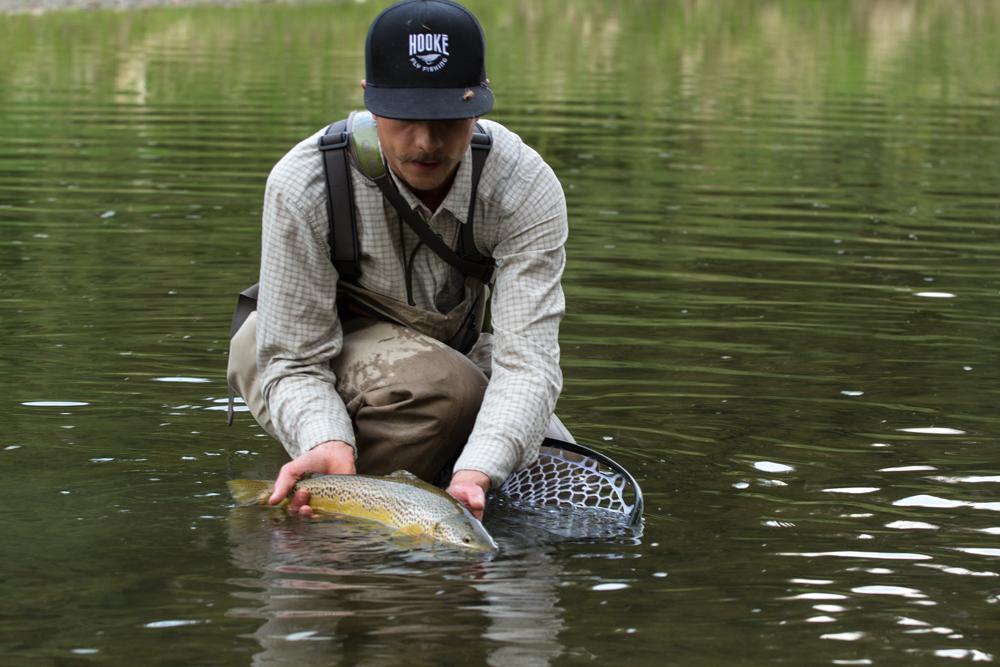 mark bron trout