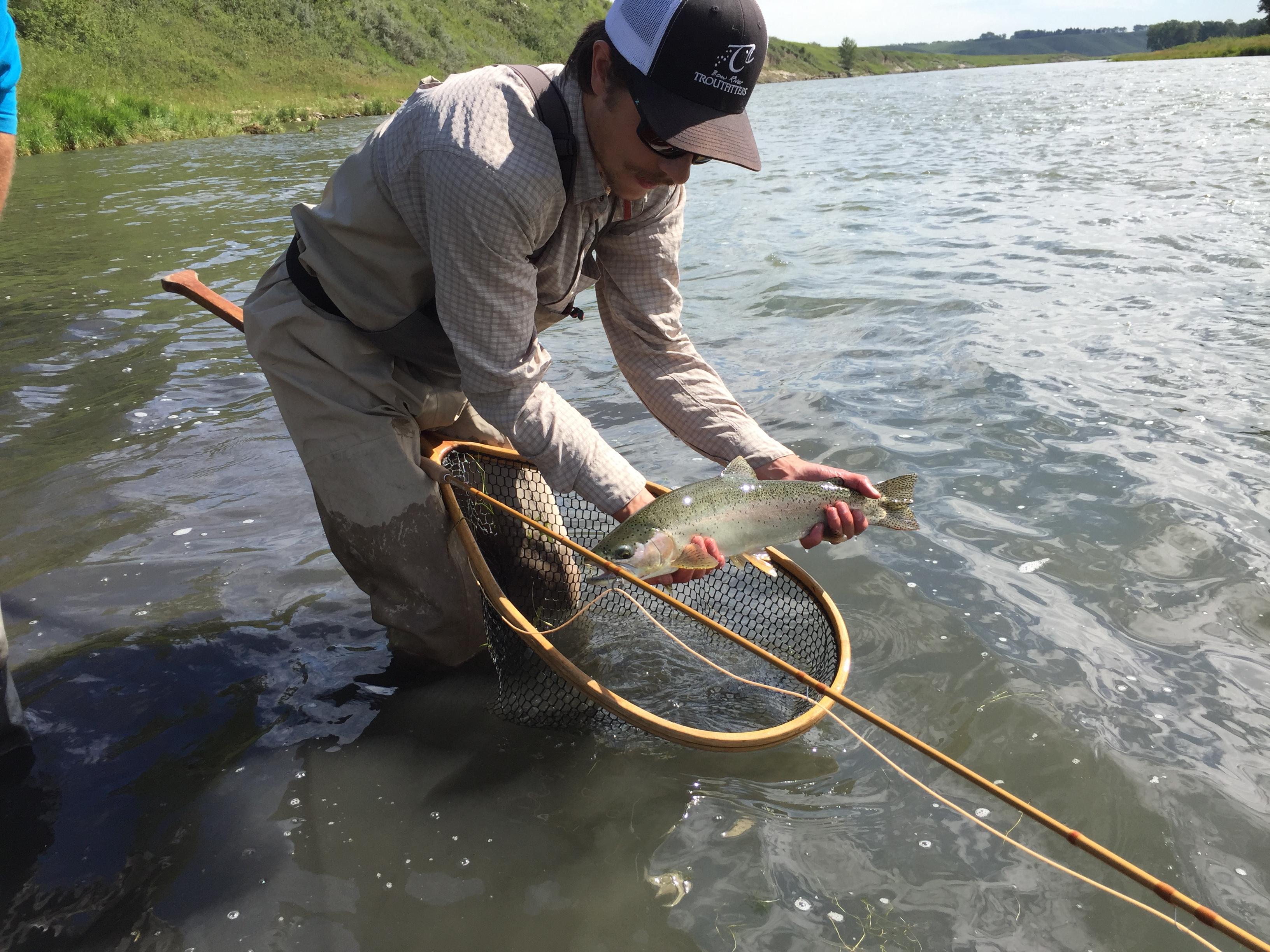 loop evotec cast rainbow trout