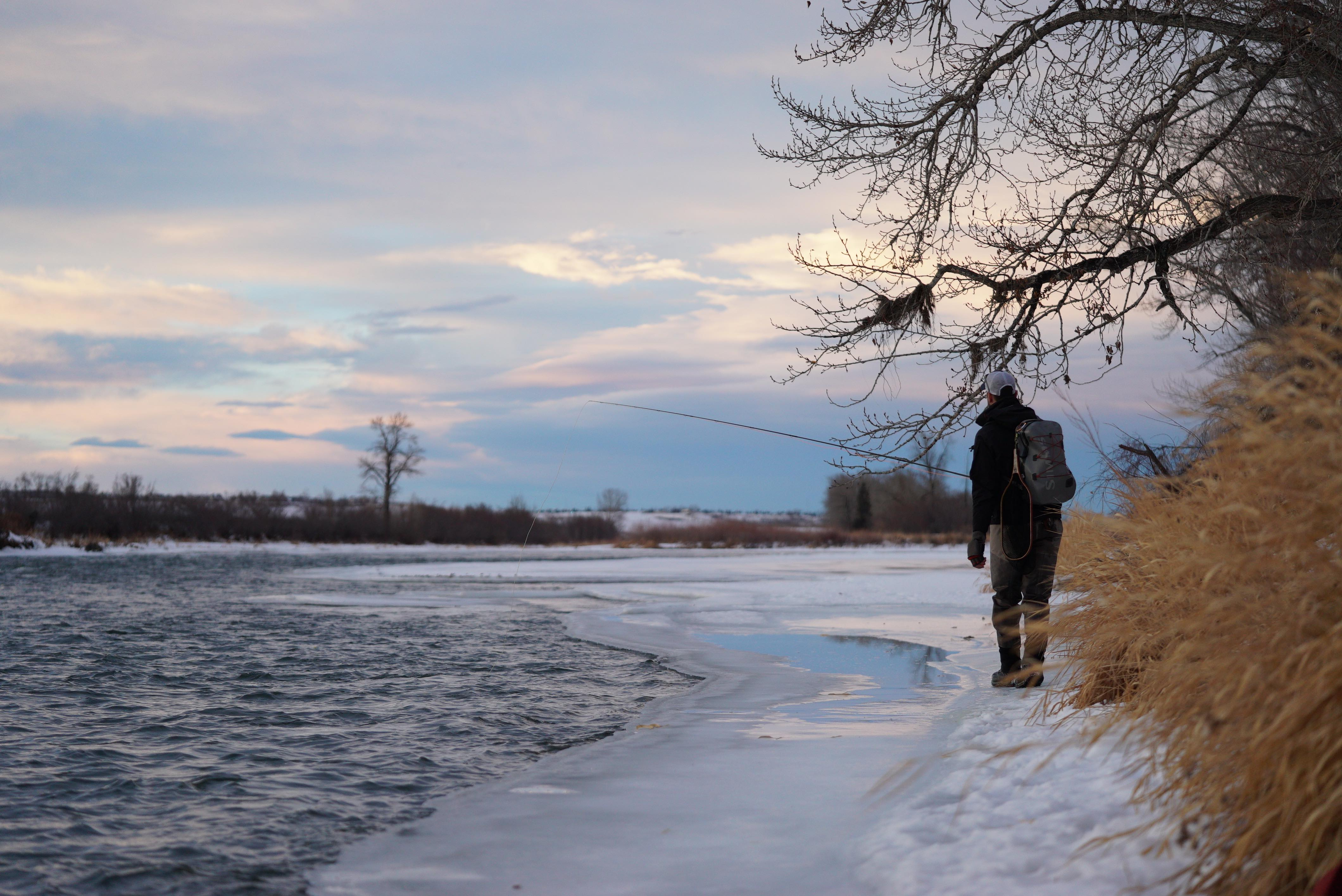 aaron winter fly fishing bow river