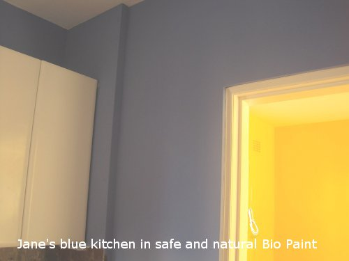 Jane's blue kitchen painted in natural Bio Paint.