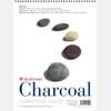 Charcoal Pads