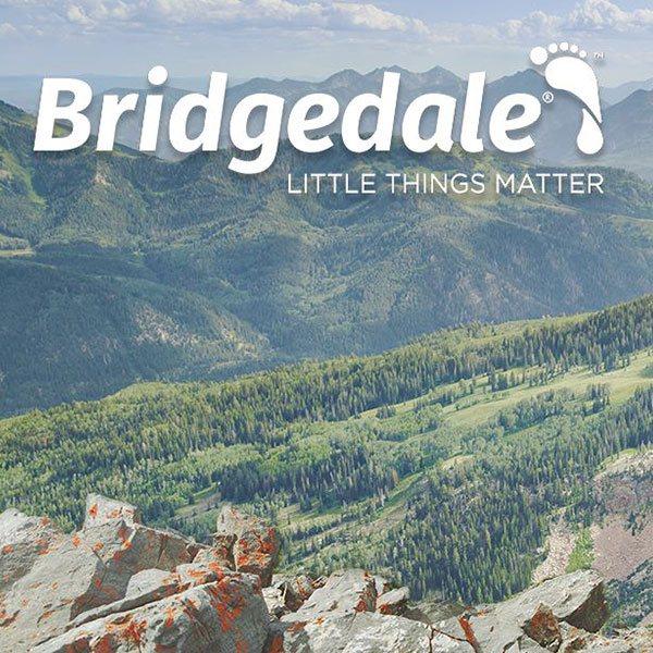 Bridgedale Socks