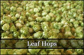 Leaf Hops